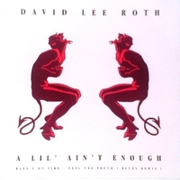 A lil' ain't enough - DAVID LEE ROTH