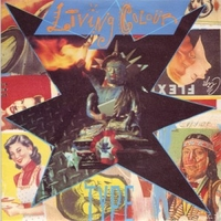 Type \ Final solution - LIVING COLOUR