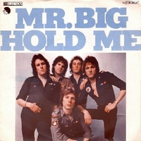 Hold me \ Vampire - Mr.BIG