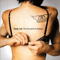 Young lust: the Aerosmith anthology - AEROSMITH