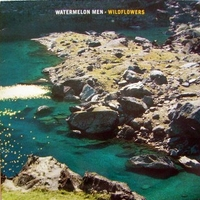 Wildflowers - WATERMELON MEN