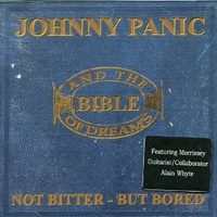 Not bitter-but bored - JOHNNY PANIC AND THE BIBLE OF DREAMS