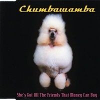 She's got all the friends that money can buy (4 tracks) - CHUMBAWAMBA