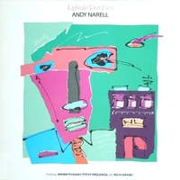 Light in your eyes - ANDY NARELL