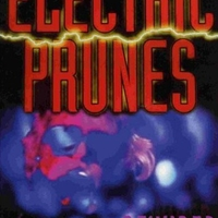 Rewired - ELECTRIC PRUNES