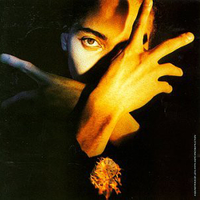 Neither fish or flesh - TERENCE TRENT D'ARBY