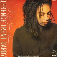 Sign your name (Lee Scratch Perry remixes - TERENCE TRENT D'ARBY