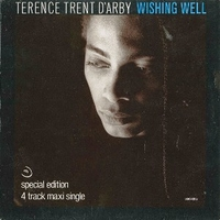 Wishing well (three coins in a fountain mix) - TERENCE TRENT D'ARBY