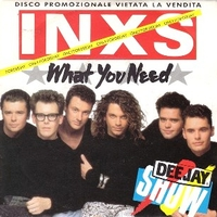 What you need \ Kiss the dirt - INXS