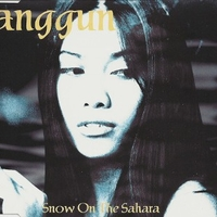 Snow on the Sahara (3 tracks) - ANGGUN