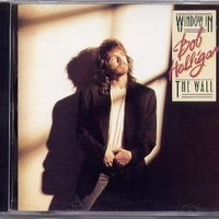 Window in the wall - BOB HALLIGAN