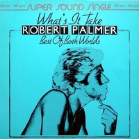 What's it take \ Best of both worlds - ROBERT PALMER