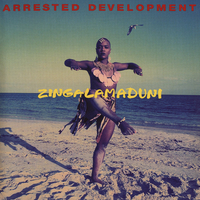 Zingalamaduni - ARRESTED DEVELOPMENT