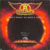 I don't want to miss a thing (2 tracks) - AEROSMITH