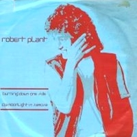 Burning down one side \ Moonlight in Samosa - ROBERT PLANT