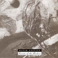 Secrets of the beehive - DAVID SYLVIAN
