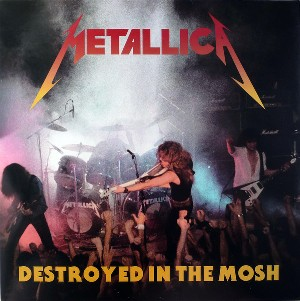 Destroyed in the mosh - METALLICA