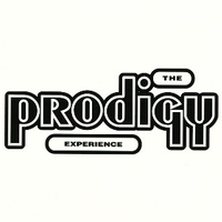 Experience - PRODIGY