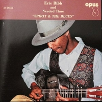 Spirit of the blues - ERIC BIBB