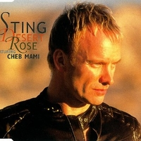Desert rose (4 tracks+1 video track) - STING