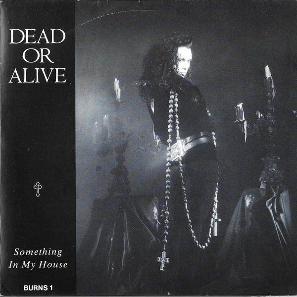 Something in my house\D.J. hit that button - DEAD OR ALIVE