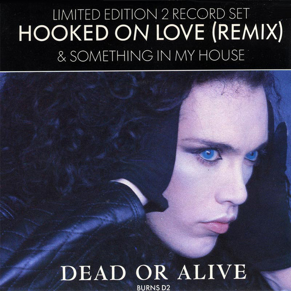 Hooke on love (remix) & Something in my house - DEAD OR ALIVE