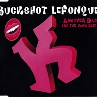 Another day (in the hood edit) (1 track) - BUCKSHOT LEFONQUE