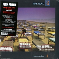 A momentary laps of reason - PINK FLOYD