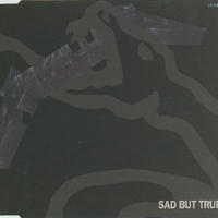 Sad but true (4 tracks) - METALLICA