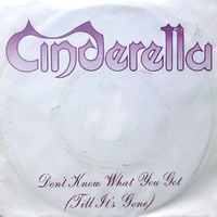 Don't know what you got (till it's gone) \ Fire and ice - CINDERELLA