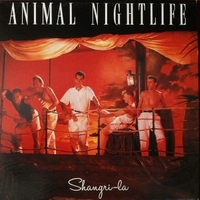 Shangri-la - ANIMAL NIGHTLIFE