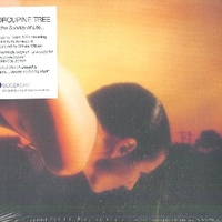 On the sunday of life... - PORCUPINE TREE