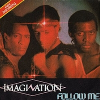 Follow me \ In the heat of the night - IMAGINATION