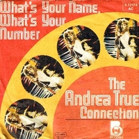 Whta's your name, what's your number \ Heart to heart (fill me up) - ANDREA TRUE CONNECTION