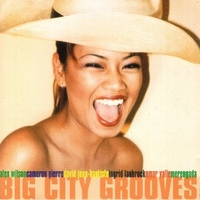 Big city grooves - VARIOUS