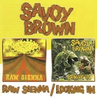 Raw sienna + Looking in - SAVOY BROWN
